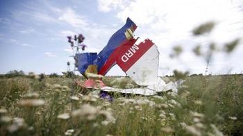 В Голландии разразился скандал из-за подставного свидетеля падения Боинга МН17