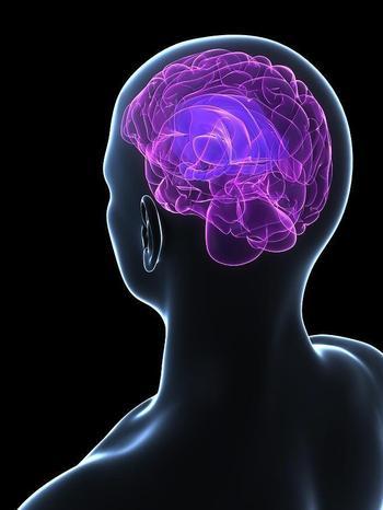 Чем заменить таблетки для улучшения работы мозга