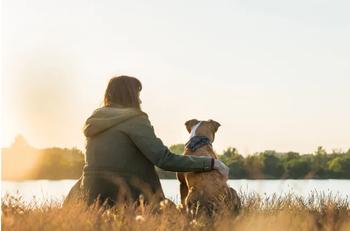 Спасенный пес пролетел 2 тысячи км, чтобы стать другом одинокой женщины