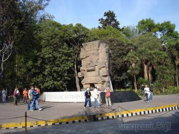 Прогулки по Мехико. Национальный музей антропологии. Ацтеки Часть 2