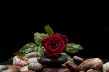 Любовный гороскоп на февраль 2020 года: Близнецы без труда найдут вторую половинку