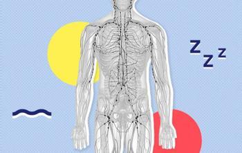 6 шагов к детоксикации через лимфатическую систему