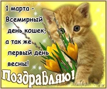 1 марта. День Кошек!