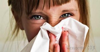 Топ-7 аллергенов в нашем доме и способы борьбы с ними