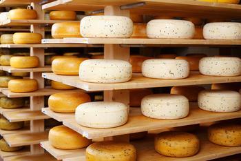 Как научиться разбираться в сырах и не нарваться на плохой продукт