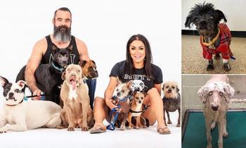 Даря жизнь отверженным: семья из Оклахомы спасла более 300 покалеченных и больных собак