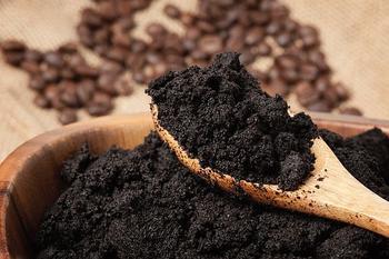 Использование спитого кофе (кофейного жмыха) как удобрения на даче