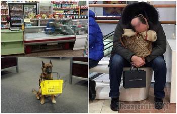 Курьезные ситуации, с которыми поход в магазин стал настоящим приключением