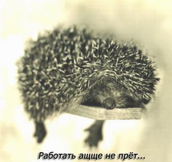Смешные картинки о работе)