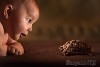 Любите детство!