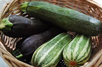 Как сохранить кабачки и тыкву на зиму в домашних условиях?