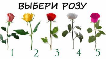 Какую розу вы выберите? Интересный психологический тест, который расскажет многое о Вас