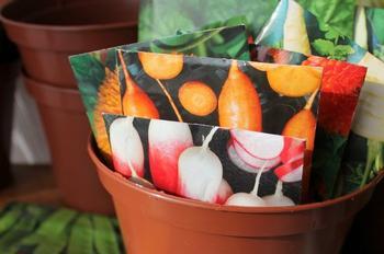 10 ошибок, которые мы допускаем при покупке семян на следующий год