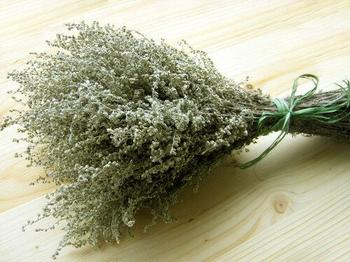 Ритуалы для удачи, здоровья и очищения дома при помощи полыни