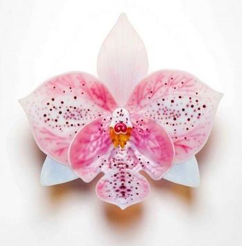 Орхидеи из стекла
