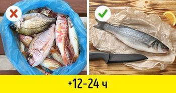10 секретных приемов, как хранить свежую рыбу