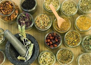 Фитотерапия и печень — лечимся травами правильно
