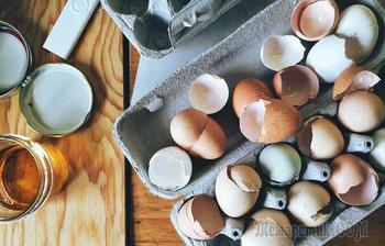Как сделать удобрение из яичной скорлупы и правильно его применять