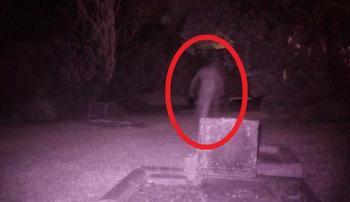На кладбище в Сиднее засняли «аномалию» в виде призрака