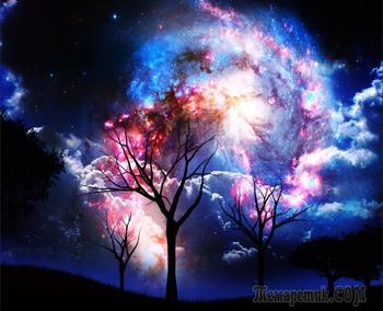 Яблоко и Вселенная.