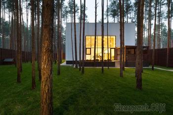 Частный дом в сосновом лесу