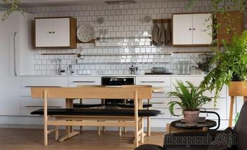 Апартаменты в Киеве для любителей природы