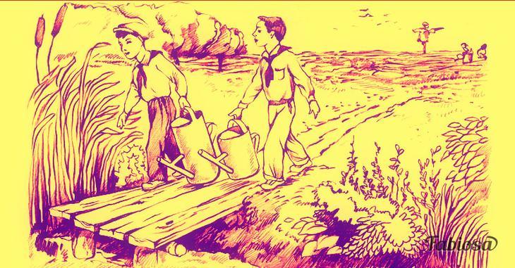 Задачка: какой из двух мальчиков принесет больше воды для полива огорода?