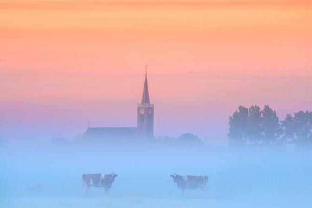 Весенняя красота Нидерландов в захватывающих дух фотографиях Альберта Дроса