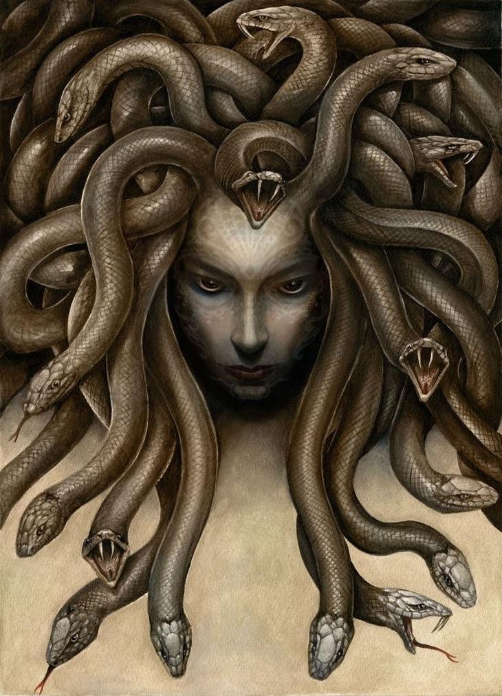 Медуза интересно, легенды, мифы, познавательно, религия, страхи человечества, страшно, чудовища