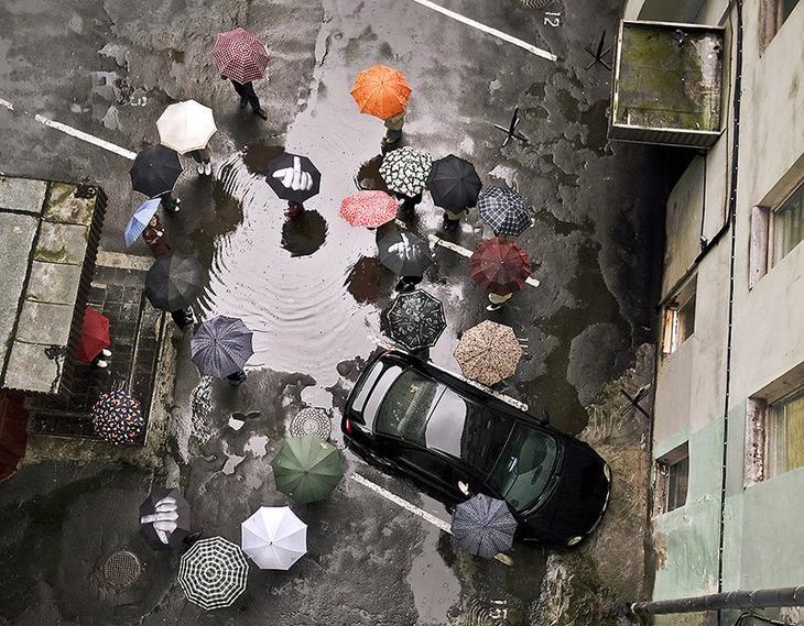 Umbrellas22 19 удивительных зонтов для осени