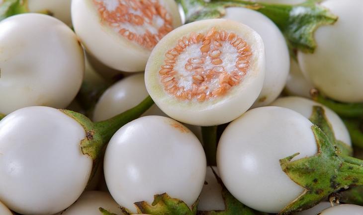 Белый яичный баклажан