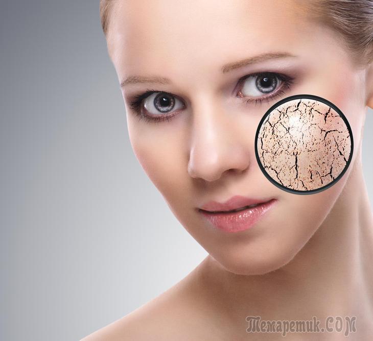 Основные типы кожи лица и их характеристика. Как определить тип кожи лица?
