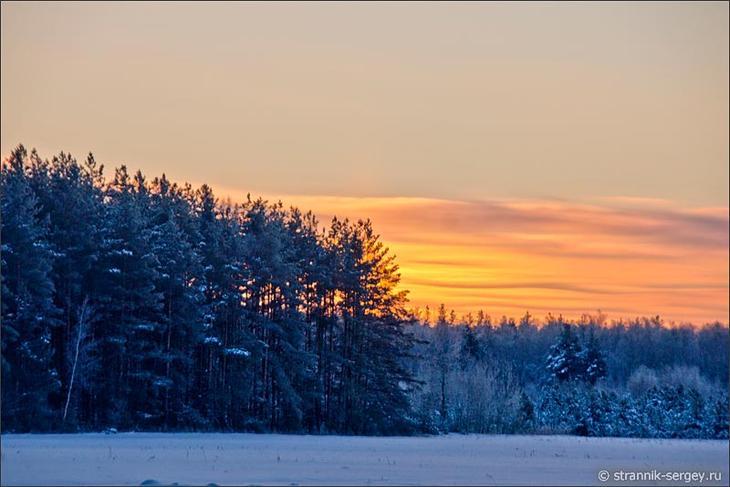Закат Солнца в зимнем лесу