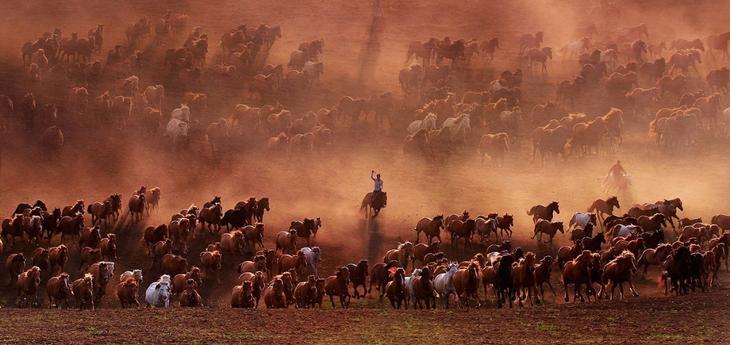 Пастбища во Внутренней Монголии, Китай loverme