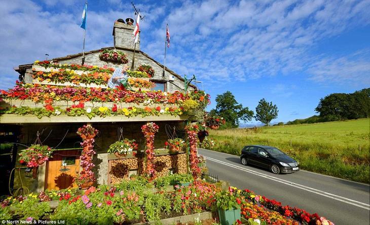 2130 Цветочный дом