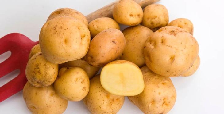 Costlyfruits09 Топ 10 самых дорогих продуктов мира