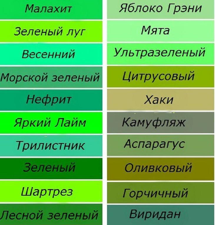 Сонник зеленый цвет к чему снится зеленый цвет во сне