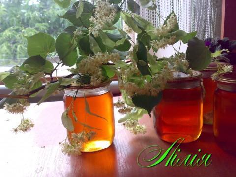 Липовый мед: полезные свойства и противопоказания, как выглядит, какого цвета, как определить