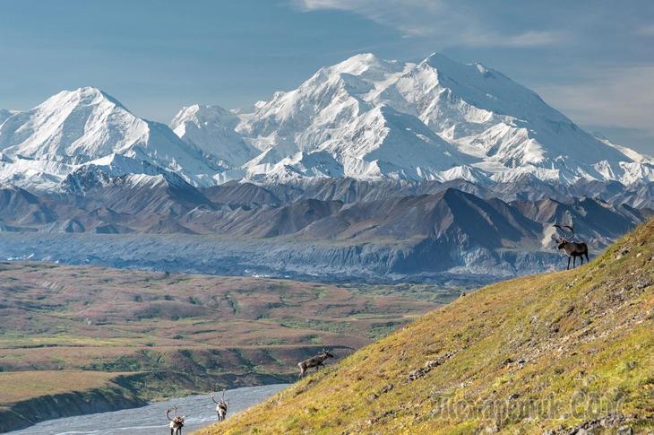 Прогулка по Аляске в фото прогулке