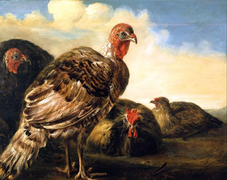 Домашняя птица -- 44х54  Музей Гронинге Брюгге