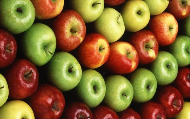Сорта яблок фото характеристика