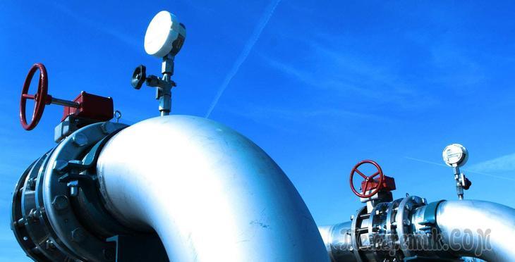 В Россию начал поступать купленный за рубежом газ