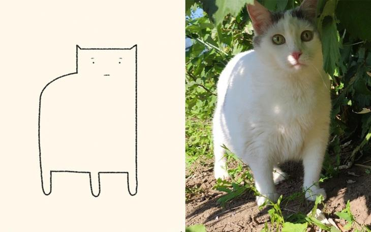 парень плохо рисует кошек но у него получается так похоже, DailyPrrr