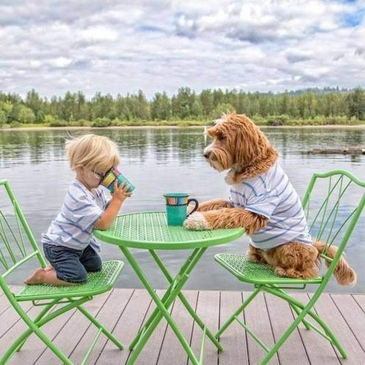 Трогательная дружба усыновленного мальчика и подобранной на улице собаки