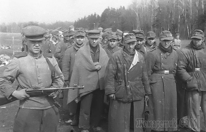 В плену у русских: что немецкие военнопленные вспоминали о годах, проведенных в СССР