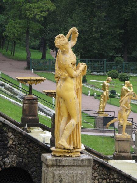 Венера прекраснозадая