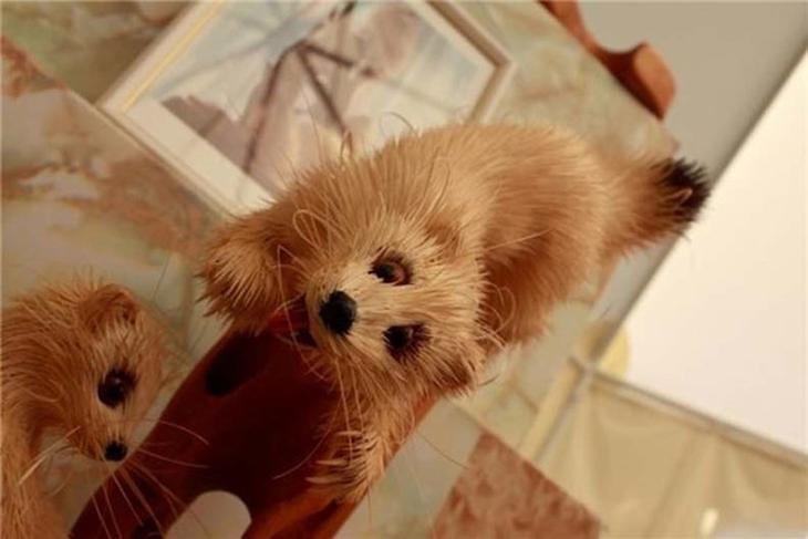 Realistic Siberian Wildlife 12 Скульптуры животных из стружки кедрового дерева