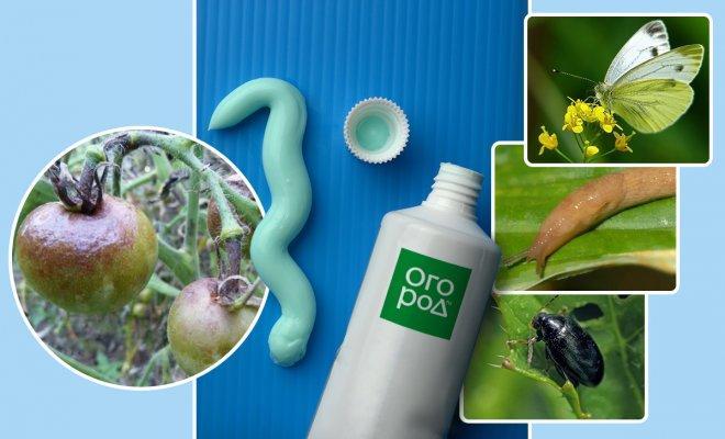 Зубная паста в саду и огороде – секреты применения