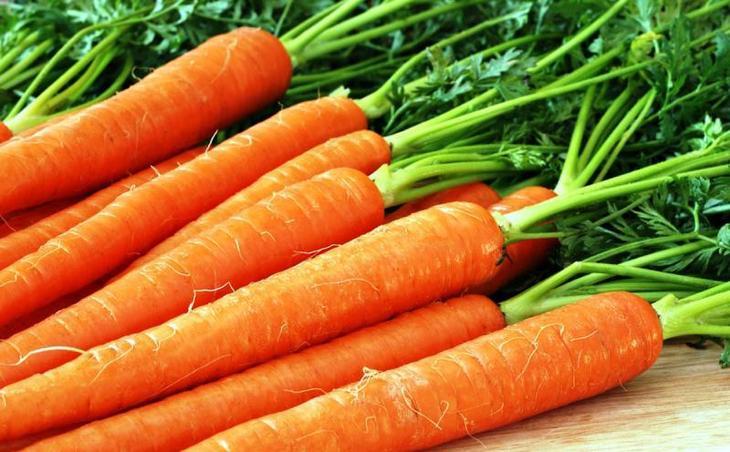 Как сохранить морковь до весны свежей