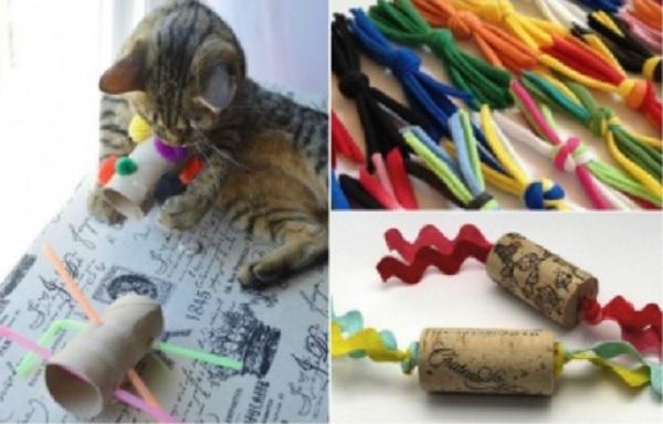 fullsize Игрушки для котят своими руками в домашних условиях, как сделать интересную для кошки игрушку